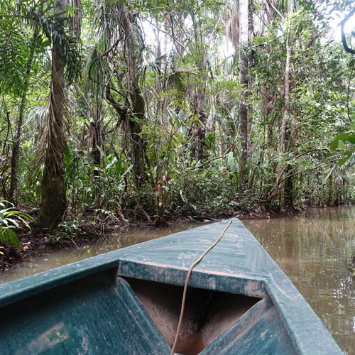 Inkaterra Amazonica
