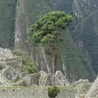 Hp-Mobile-alternative-peru-machu-picchu-trip-travel-ideas-