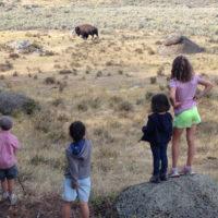 Wyoming-Lamar-Valley-road-trip-family