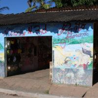 Gallery-Barreirinhas--Stephanie-Family-Trip-to-Brazil-Lencois-Maranhenses-Smart-idea-for-travel-in-brazil-4