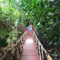 Yucatan-Mexico-valladolid-Familiy-trip-itinerary-Trip-idea-4
