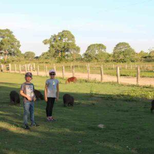 Stephanie's trip to Pantanal, Brazil