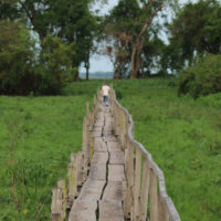HP-Mobile-pantanal-Brazil-Family-trip-Trip-ideas