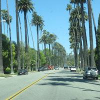 3Gallery-Claires-trip-to-Joshua-tree-Trip-Ideas-Smart-trip