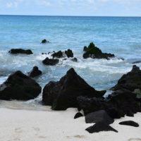 Galap[agaos-Gallery-HP-Carmo-Trip-to-Ecuador-Galapagos-Trip-ideas-for-families-Smart-trip-ideas-Itimeraries-11