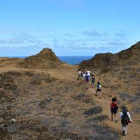 Galapagos-Gallery-HP-Carmo-Trip-to-Ecuador-Galapagos-Trip-ideas-for-families-Smart-trip-ideas-Itimeraries-10