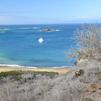 Galapagos-Gallery-HP-Carmo-Trip-to-Ecuador-Galapagos-Trip-ideas-for-families-Smart-trip-ideas-Itimeraries-12