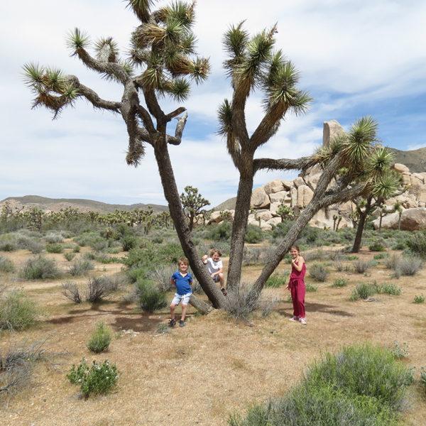 Gallery-HP-Claire-Trip-to-California-Trip-Idea-Trip-itineraries-to-California-Roadtrip-RV-rental