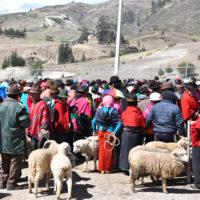 bisGallery-HP-Carmo-Trip-to-Ecuador-Galapagos-Trip-ideas-for-families-Smart-trip-ideas-Itimeraries-16