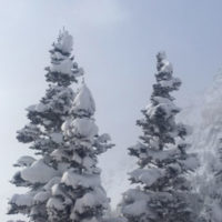 ski-trip-to-Alta-powder-snow-family-holidays-3