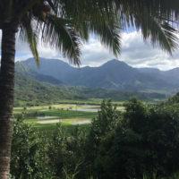 Album-HP-hawaii-Elizabeth-Family-trip-to-Hawaii-Trip-ideas-and-inspiration-1