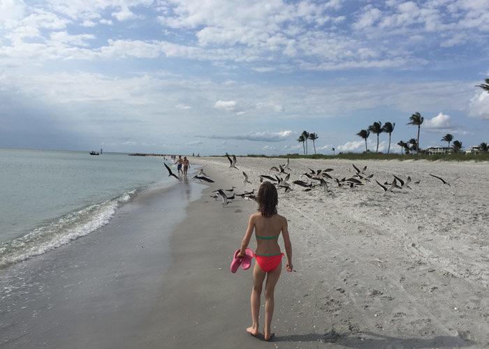 ALBUMLaurence-Trip-to-Florida-Sanibel-and-Naples-with-kids-Beach-holidays-Trip-ideas-Florida-2