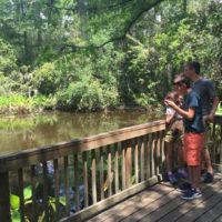 ALBUMLaurence-Trip-to-Florida-Sanibel-and-Naples-with-kids-Beach-holidays-Trip-ideas-Florida-8