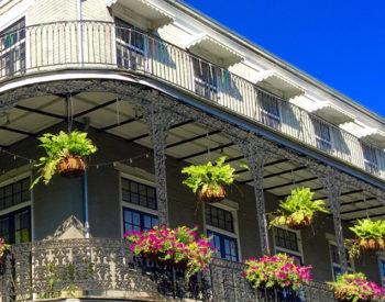 Hi, New Orleans