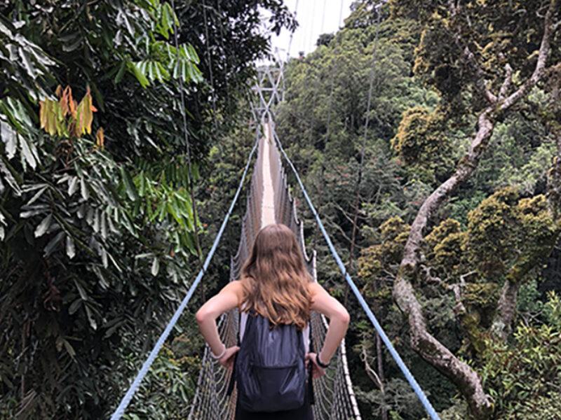 Gallery-canopy-rwanda-family-and-kids-trip-amazing-safari
