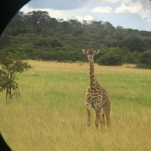 Chloe's trip to Rwanda