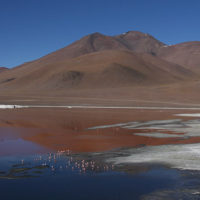 gallery-Karen-Trip-to-Bolivia-Trip-inspiration-and-ideas-for-families-and-kids2