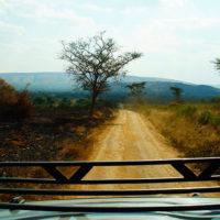 gal-2-Stephanie-trip-to-Uganda-Family-safari-Africa