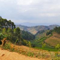 gal-4-Stephanie-trip-to-Uganda-Family-safari-Africa