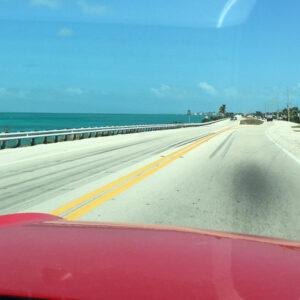 Albane's Trip to North Carolina & Florida, US